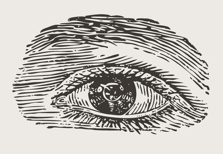 antique: engraved vintage eye, like wood work