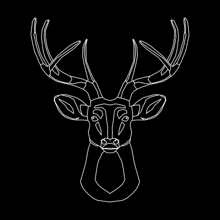 taxidermy: Line deer, wireframe in black background
