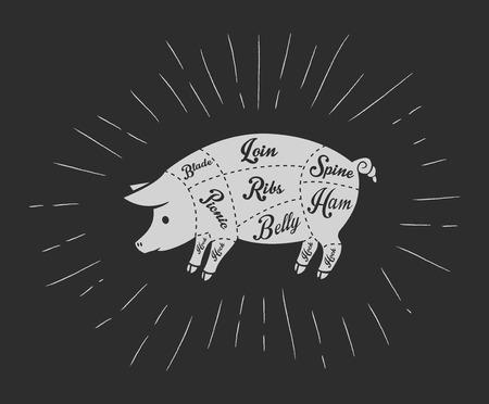 cerdos: cortes de carne de cerdo en el estilo de la pizarra de la vendimia