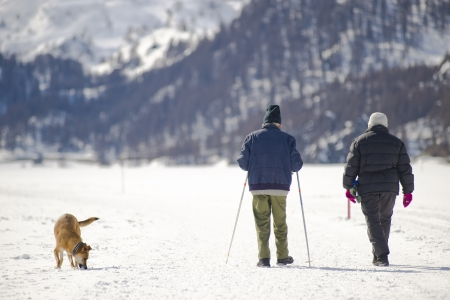 Aged couple with dog walking on the snow  photo