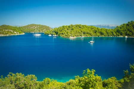 Landscape of the coast line of Mljet Croatia with the mountains in the background