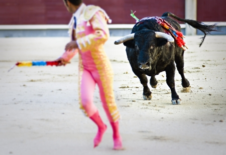 capote: Spanish Fiesta: Bullfighting. During the Banderillas third, the bull runs after the matador Stock Photo