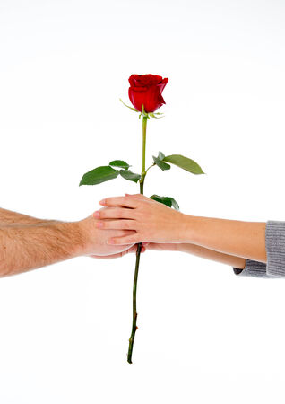 close up of a in love couple holding a single red rose on a white background photo