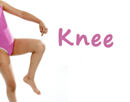 full length girl wearing a pink swimsuit pointing at her knee on a white background for a school anatomy or body part chart photo