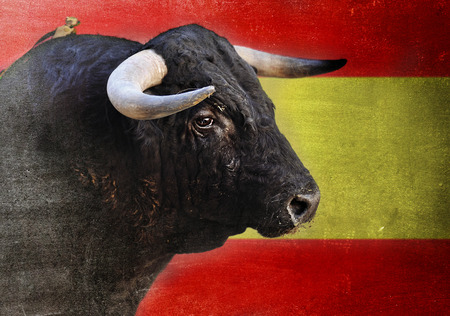 spanish bull: bull head with big sharp horns looking dangerous and scary isolated with Spain flag grunge and dirty edited background in Spanish Fiesta and bullfight concept Stock Photo