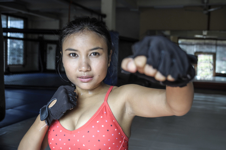 sexy asian woman: corporate portrait of sexy beautiful and sweaty young Asian woman in sport cloths and fighting gloves throwing punch in combat and fight training workout exercise at gym dojo in fitness lifestyle concept