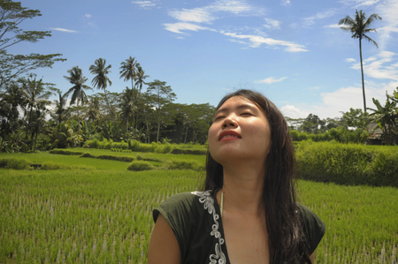 young beautiful Asian Chinese tourist exploring jungle and rice field pad area in Bali Indonesia relaxed and happy enjoying holidays trip in tourism and beauty tropical destination concept Banco de Imagens