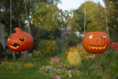 Two Halloween pumpkins with button eyes are suspended on strings against a blooming garden background. Stock fotó