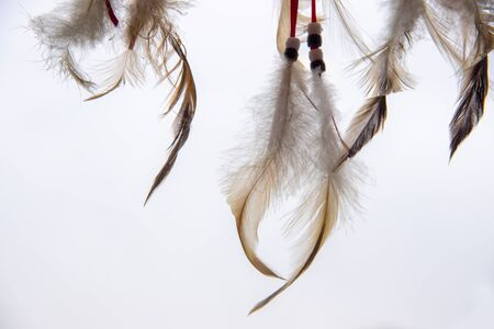 Bird Feathers, laces and beads, part of a Dreamcatcher, on a light background. Banco de Imagens