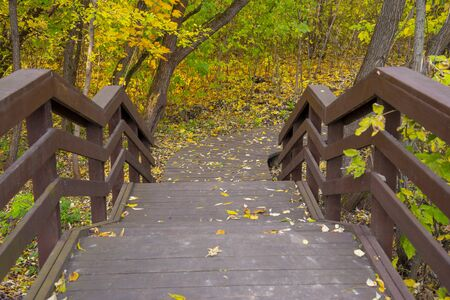 The staircase leading to the Park, strewn with autumn yellow leaves. Stock Photo
