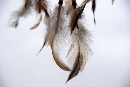 Feathers, laces and beads, part of a Dreamcatcher, on a light background.