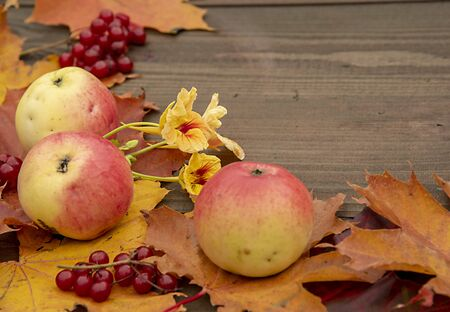Apples, berries, autumn leaves and flowers on a wooden background.