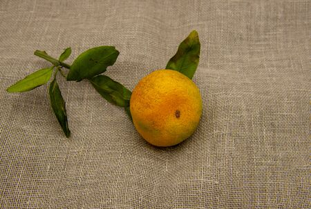 One bright orange tangerine with green leaves on a coarse cloth.