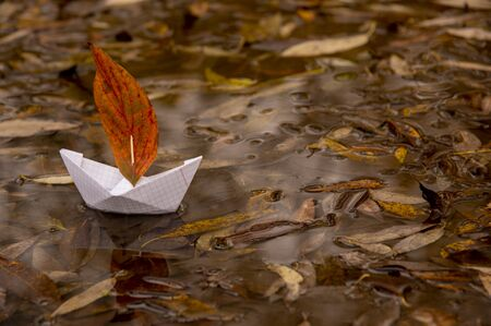 Una barchetta di carta galleggia in una pozzanghera, una foglia rossa di quercia invece di una vela, intorno alle foglie cadute autunnali giacciono.