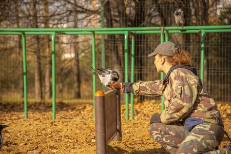 Cynologist on the dog Playground trains a crow.Woman and bird. Archivio Fotografico - 133303680