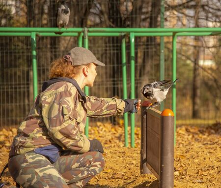 Cynologist on the dog Playground trains a crow.Woman and bird. Archivio Fotografico - 133303715