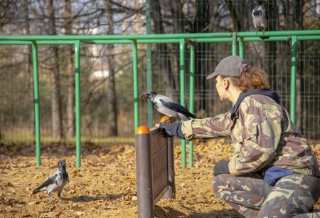 Cynologist on the dog Playground trains a crow.Woman and bird. Archivio Fotografico - 133303803