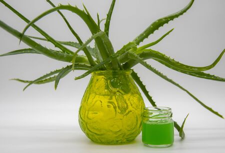 Branches of aloe in a glass green vase and a jar of aloe juice. Light background. Banco de Imagens - 133627003