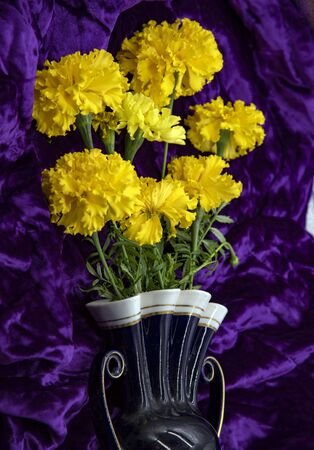 Bright yellow marigold flowers in a vase on a purple velvet background.