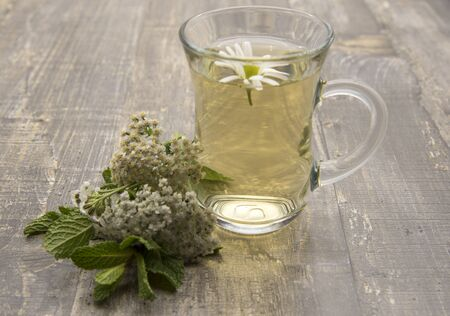 Transparent Cup with herbal chamomile tea and sprigs of fresh yarrow and mint on a wooden background. Banco de Imagens - 133627031
