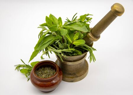 Mortar with fresh herbs and ceramic bowl with dry seasoning. On light background. Stock Photo