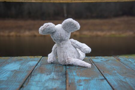 A soft toy mouse sits against a blurred late-autumn landscape.