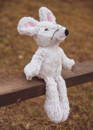 A lone Soft toy mouse is photographed from the side on a wooden bench.