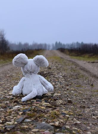 Toy soft mouse sitting on a country road wet face to the forest.