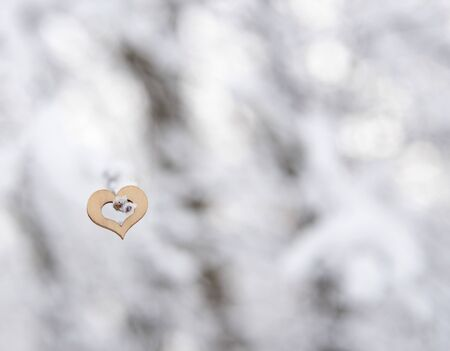 One wooden heart hanging on a snow-covered tree branch on a blurred background. The Symbol Of Valentines Day. Banco de Imagens
