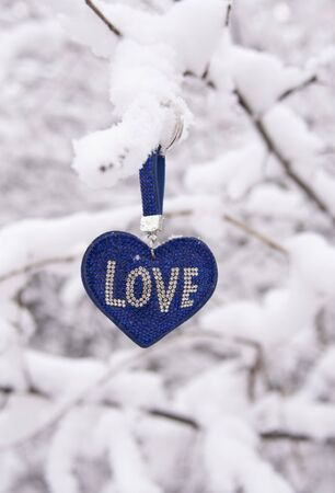 A blue heart with the inscription love hangs on a snow-covered tree branch against a blurred winter landscape.