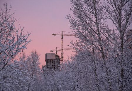 Snow-covered trees, a construction crane and an unfinished house against the background of a gentle pink and purple sunset in the early winter morning.