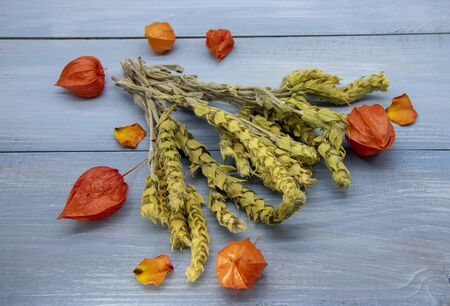 Mursal, hes Pirin tea and bright orange physalis on a blue background. 版權商用圖片