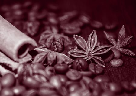 Cinnamon and star anise on coffee beans.Tinted photo, close-up. Stok Fotoğraf