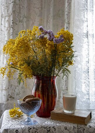 Vintage still life . A bunch of Mimosas in an old-fashioned vase , cookies and milk, a yellowed book on a lace tablecloth by the window. Archivio Fotografico