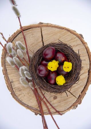 Nest with colored quail eggs and small yellow Chicks and willow branches on a wooden background. Easter card . The view from the top.