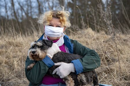 An elderly woman in a protective medical mask and rubber gloves on a walk with a dog, a miniature Schnauzer. Banco de Imagens