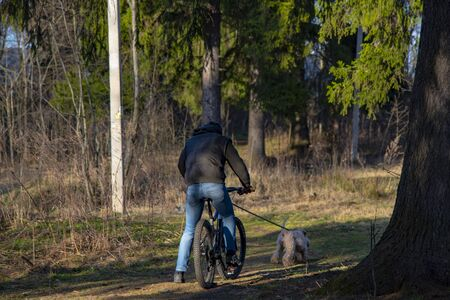 A man rides a Bicycle along a forest path, followed by a dog.
