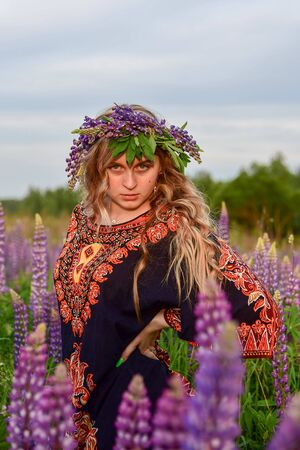 A charming blonde girl with a wreath on her head and in an ethnic dress poses in lupine fields. Summer landscape.