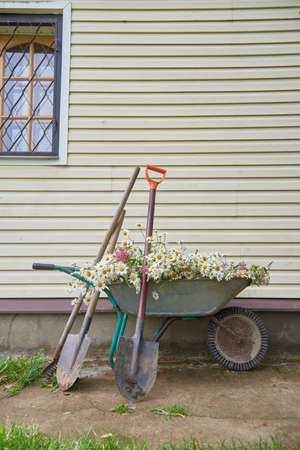 Garden tools and a Garden wheelbarrow full of flowers stand against the wall of the house.