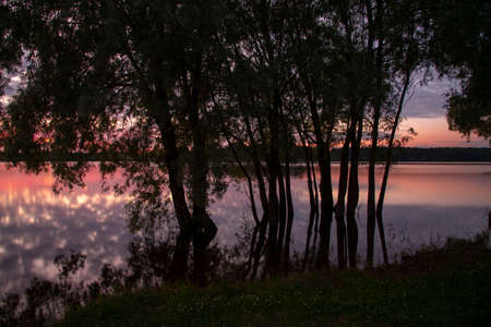 Black silhouettes of trees against the background of an incredible sunset over the lake. Evening summer landscape. The photo was taken using a long shutter speed.