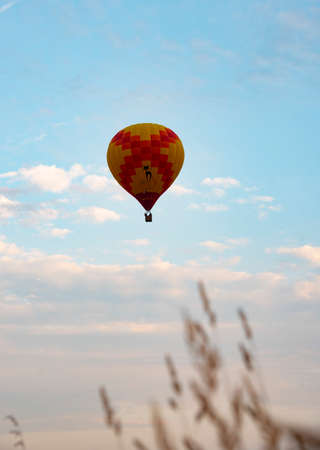A bright Hot Air Balloons against a blue cloudy sky. In the foreground is blurred ears. Copy space for text. Stockfoto