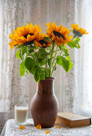 A bright bouquet of sunflowers in a clay jug on the background of a lace curtain. Vintage still life. Stockfoto