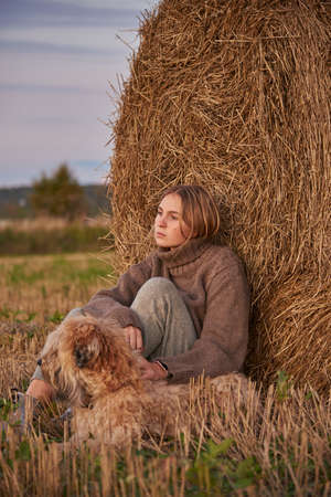 Sad charming girl in a warm sweater with a dog, wheat soft-haired Irish Terrier, sitting by a haystack at sunset. 스톡 콘텐츠