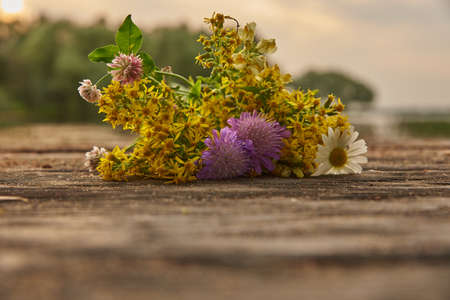 A bouquet of wild flowers lies on a wooden bridge on a blurry background of nature. Stock Photo