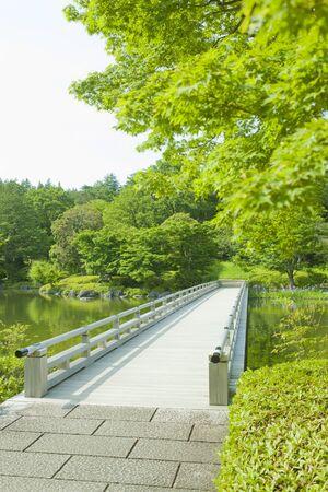 Japanese Garden bridge 免版税图像