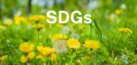 banner image of SDGs Stockfoto
