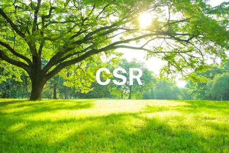 Banner image of CSR Stockfoto