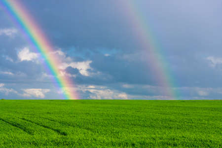 double rainbow in the blue cloudy dramatic sky over green field of wheat illuminated by the sun in the country side Archivio Fotografico