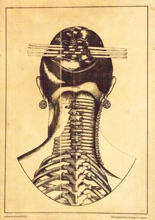 Illustration of the anatomy of traditional neck rings around womens necks in myanmar padaung ethnical minority tribe in Northern Thailand