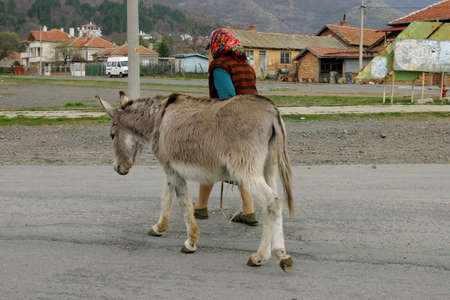 burro: Una mujer caminando con su burro.